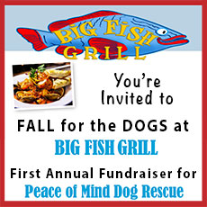 Peace of mind dog rescue home for Big fish grill menu